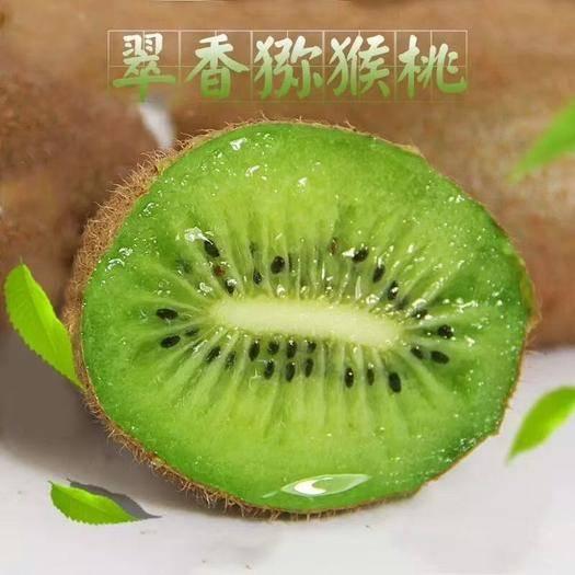 陕西省西安市周至县 产地直销陕西周至翠香猕猴桃