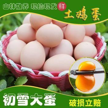 雞蛋 (48小時發貨內)農家散養包郵土雞蛋新鮮包售后可代發