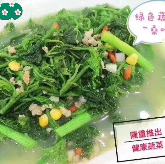 廣東省清遠市英德市速凍桑葉菜 養生菜,桑牙菜