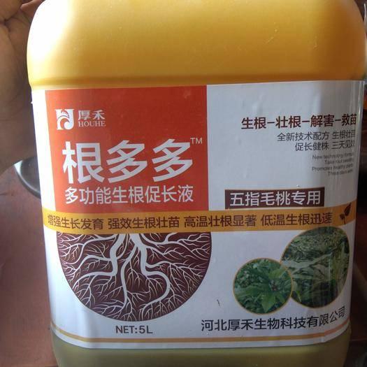 广西壮族自治区钦州市灵山县果树专用肥 根多多-育苗专用肥