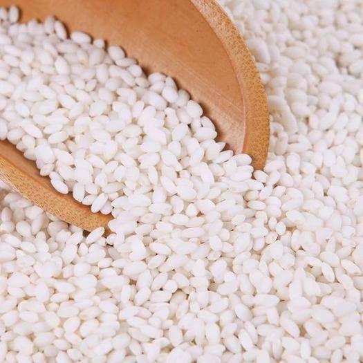 黑龙江省哈尔滨市五常市 东北五常圆粒糯米3.2一斤50斤装