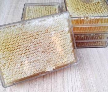 成熟蜂巢蜜百花巢蜜嚼著吃550克一盒加量不加價