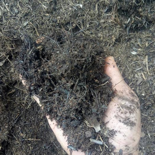 云南省曲靖市会泽县 来自云南大山里的上等营养土,精选优质高腐蚀松针树叶,