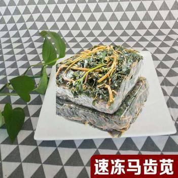 紫莧菜 速凍馬齒莧,營養豐富,全國供應,常年供應