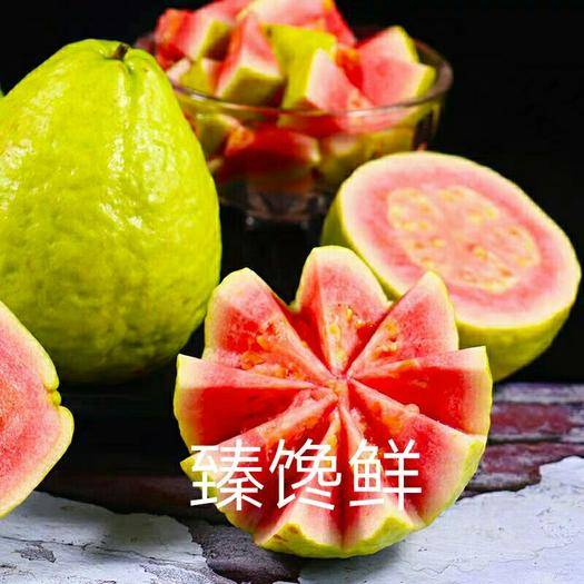 福建省漳州市长泰县 红心芭乐