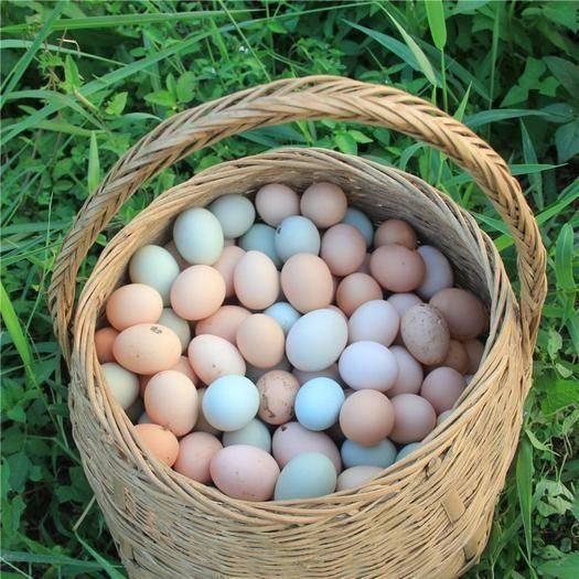 散养绿壳土鸡蛋柴鸡蛋笨鸡蛋(13-14枚/斤)