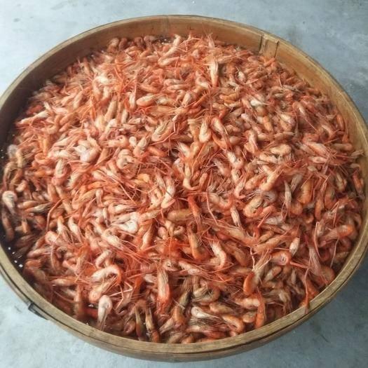 江西省赣州市南康区青虾 水煮大河虾