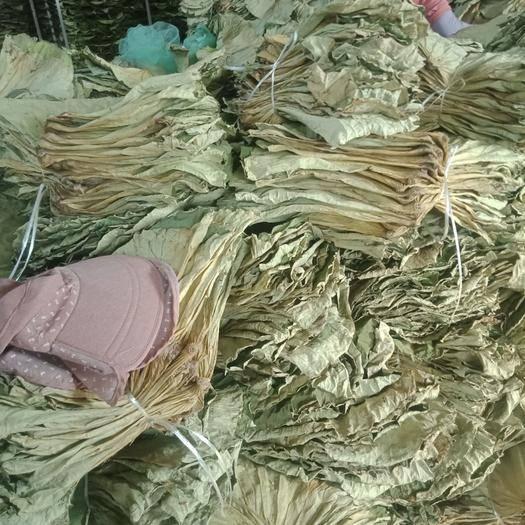 山東省濟寧市魚臺縣 微山湖特產,精品烘干荷葉