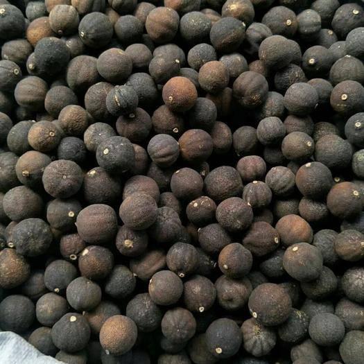 山东省枣庄市滕州市 青皮个大统货,产地直销,一手货源。