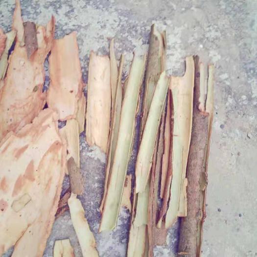廣西壯族自治區南寧市良慶區 肉桂干貨
