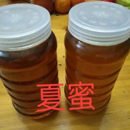 广西壮族自治区来宾市金秀瑶族自治县 自己看看土蜂蜜真不真