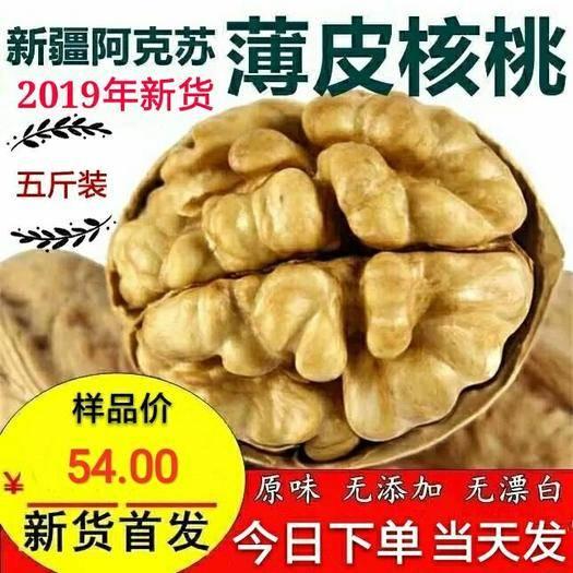 薄皮核桃 【熱賣】2019年新貨上市35mm果 新貨五斤包郵