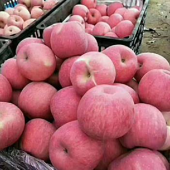 美八蘋果 綠色食品