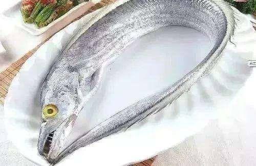 广西壮族自治区北海市银海区 带鱼