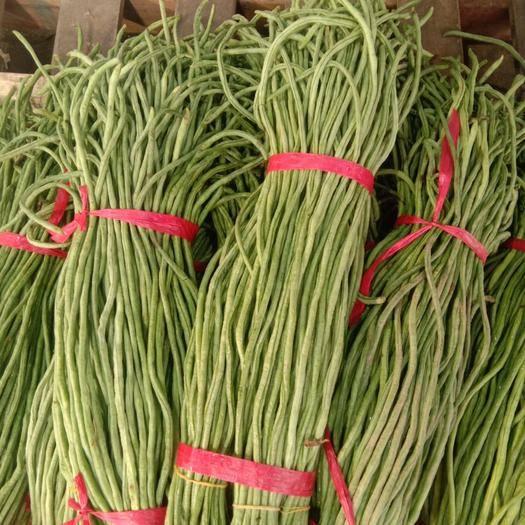 湖北省武汉市洪山区架豆角 有机绿色蔬菜,无公害。量大从优
