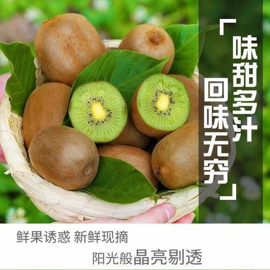 陕西省延安市吴起县 (正常发货) 陕西周至猕猴桃绿色心新鲜水果当季奇异果批发