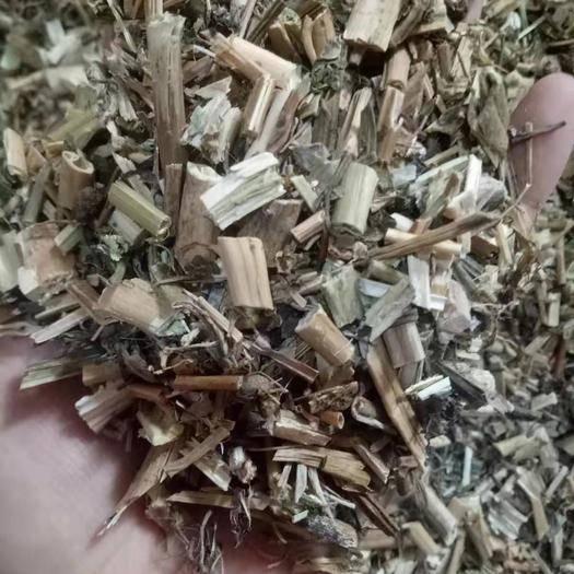 安徽省亳州市譙城區 龍葵  1公斤/袋干凈無雜質