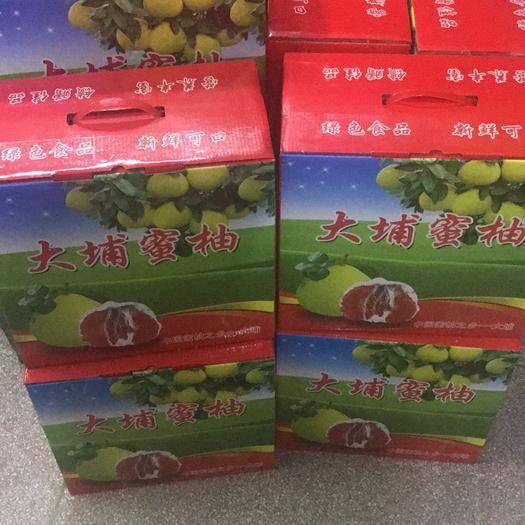 广东省梅州市大埔县梅州蜜柚 供应三红,红肉,白肉蜜柚,水份足