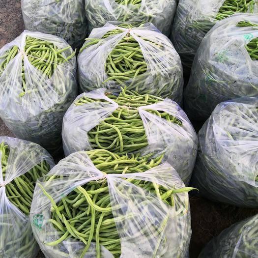 内蒙古自治区巴彦淖尔市乌拉特前旗 长豆角,2.5元,上门收货