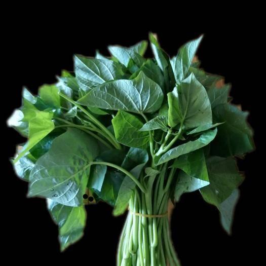 廣西壯族自治區柳州市柳南區 綠翡翠無公害富硒紅薯葉