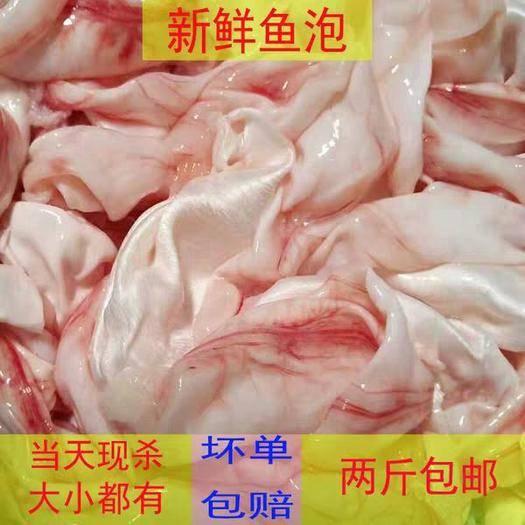 贵州省贵阳市花溪区鱼鳔 鱼泡