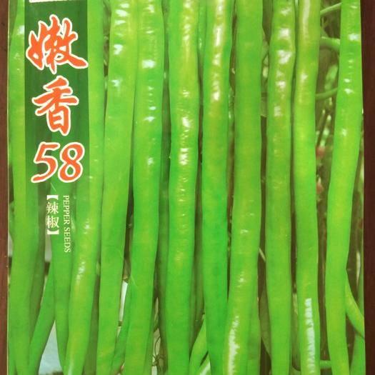 四川省绵阳市涪城区 特长线椒种子 辣椒种子