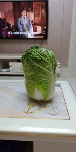 吉林省白城市大安市 大量出售东北大白菜。