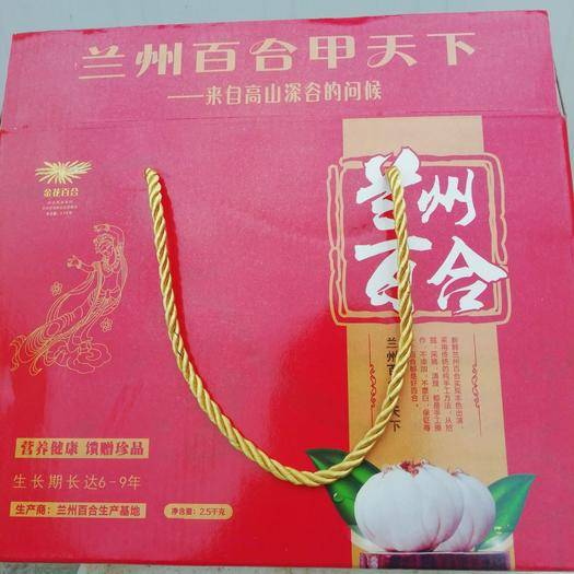 甘肅省蘭州市七里河區 蘭州鮮百合,可以生吃的甜百合