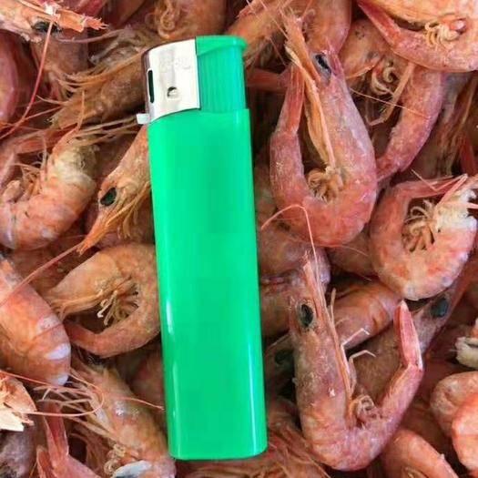 山东省滨州市沾化区 铁皮虾做炸虾的原料虾,海虾18斤起批