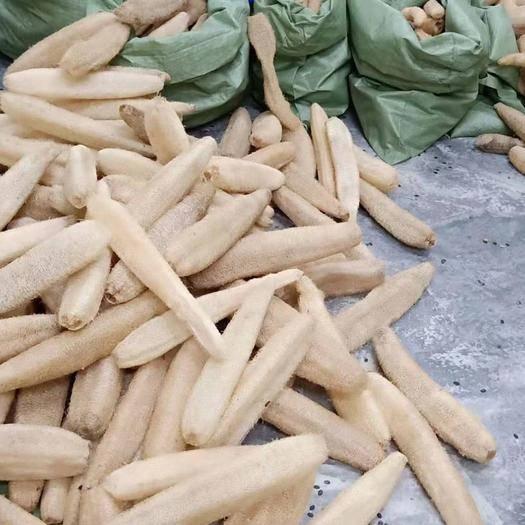 广西壮族自治区柳州市鱼峰区 丝瓜络出售