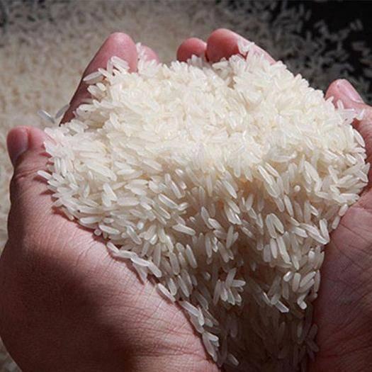 湖南省常德市澧县 有机稻谷、稻鸭模式,无农药化肥,以申请绿色认证