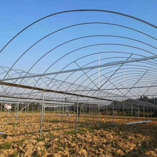 江苏省连云港市灌云县 厂家直销各类养殖棚种植棚及连栋棚。