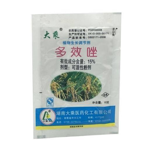 湖北省武汉市东西湖区 农药大乘15%多效唑矮子药水稻油菜旺控制植物生长调节剂粉剂