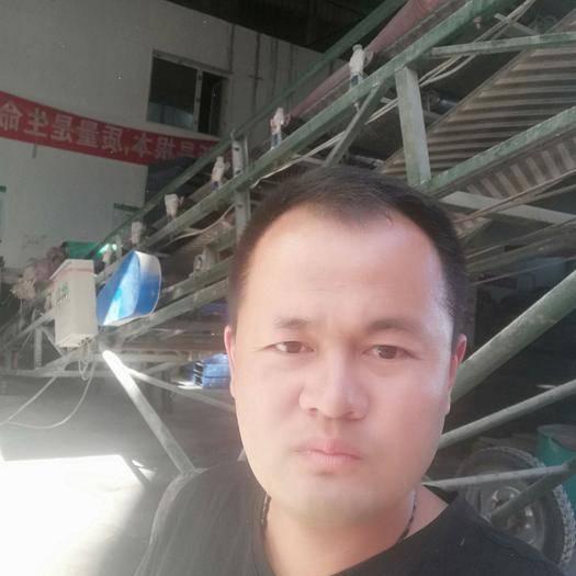 新疆维吾尔自治区昌吉回族自治州奇台县麦麸 麸皮