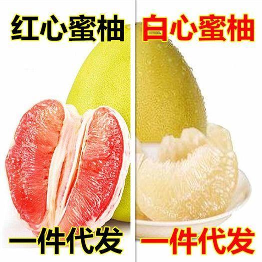 福建省漳州市平和县 柚子福建红心平和蜜柚10斤一件代发包邮红心柚子三红蜜柚