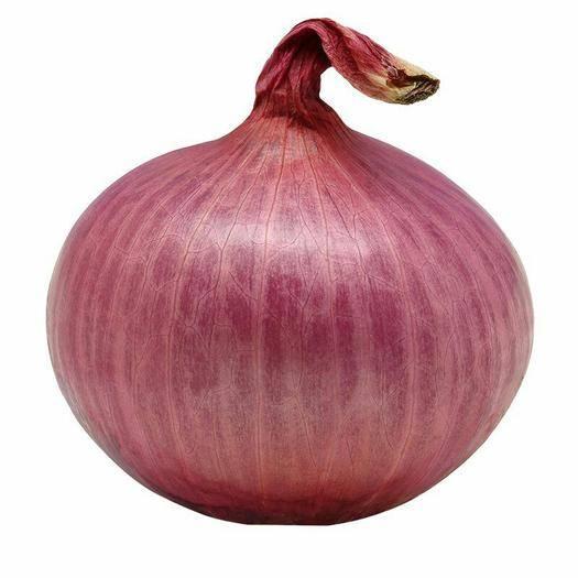 河北省石家庄市井陉县 紫红皮洋葱10斤包邮新鲜蔬菜紫红皮洋葱圆