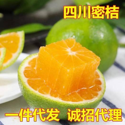 四川省成都市蒲江县 新鲜四川蜜桔柑橘10斤装橘子桔子现摘一件代发包邮