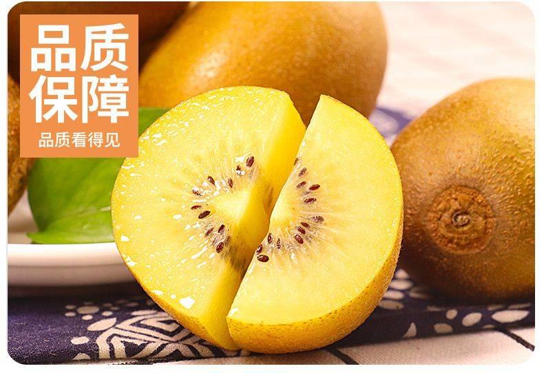 新鲜现摘四川蒲江黄心猕猴桃奇异果多规格一件代发包邮