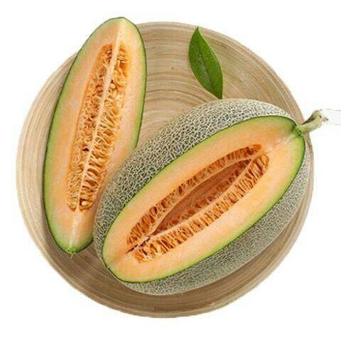 河北省唐山市丰润区 6-7斤一个  西州蜜 哈密瓜新疆正宗哈密瓜 亚热带水果