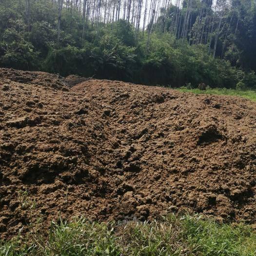 广东省清远市英德市 发酵纯有机牛粪