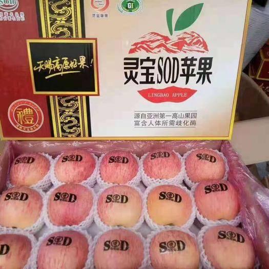 河南省三門峽市靈寶市 走親訪友孝老,靈寶蘋果最好。自家產直銷。