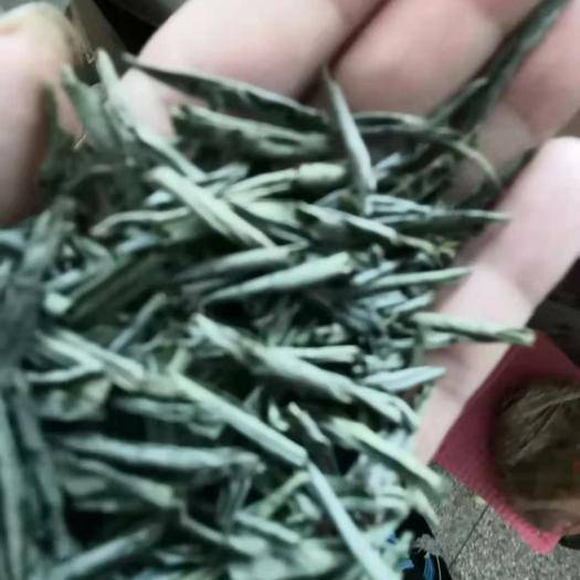 安徽省六安市金寨县六安瓜片 精品精品只做精品