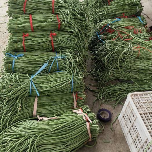 河北省石家庄市新乐市 我们这大棚豆角大量上市了,需要的联系