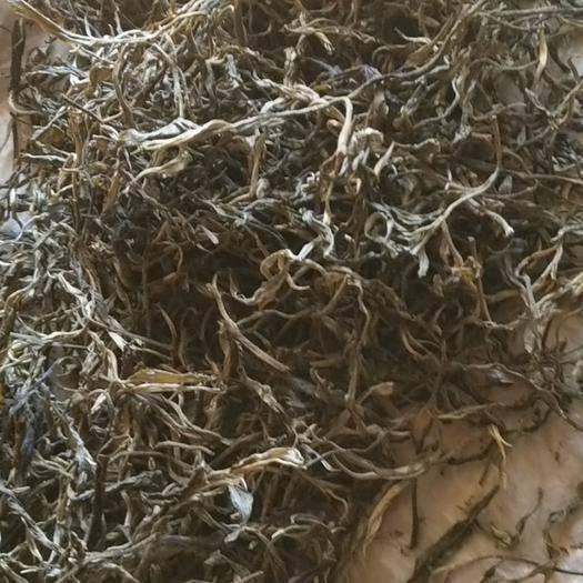 云南省西双版纳傣族自治州勐腊县易武普洱茶 国有林生态古树秋茶