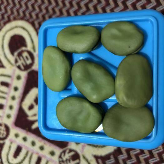 内蒙古自治区包头市达尔罕茂明安联合旗干蚕豆