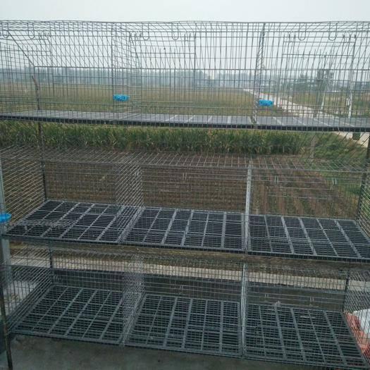 江苏省徐州市新沂市养殖设备 兔用养殖笼