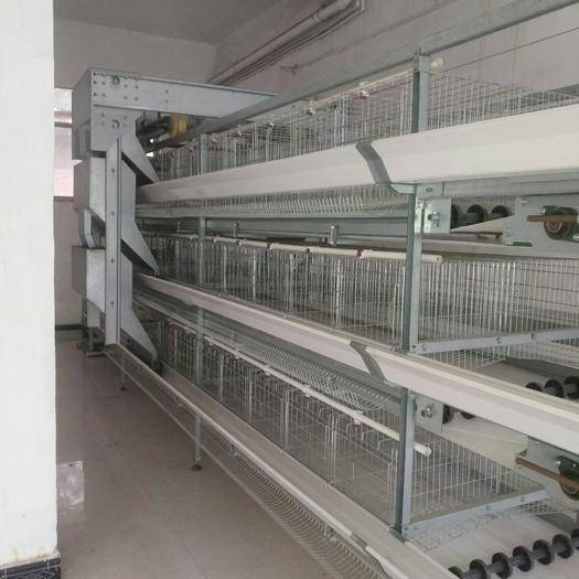 河南省驻马店市驿城区养殖设备 环保型养鸡设备,需要请chenhan66666999