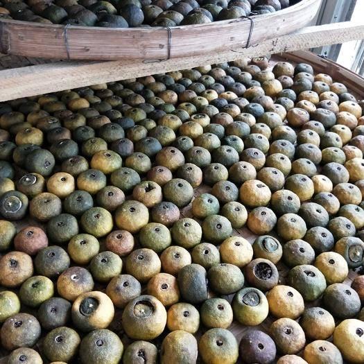 广西壮族自治区梧州市岑溪市 陈皮普洱小青柑,洱熟茶,以独特的发酵工艺制作而成