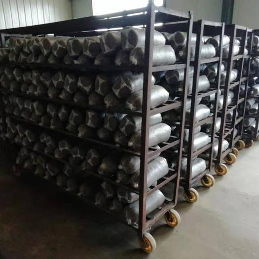 河北省沧州市孟村回族自治县 平菇,生产基地直供