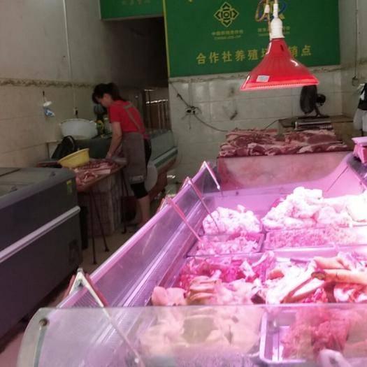 广西壮族自治区百色市田东县猪肉丸 农场土猪肉瘦肉猪大量供应分割配送。以质量为宗旨,有问题包退货